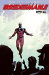 IRREDEEMABLE #36 Cover B