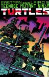 TEENAGE MUTANT NINJA TURTLES COLOR CLASSIC #1