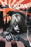 CROW #1 1 in 25 Variant