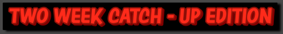 TWO WEEK CATCH UP BANNER
