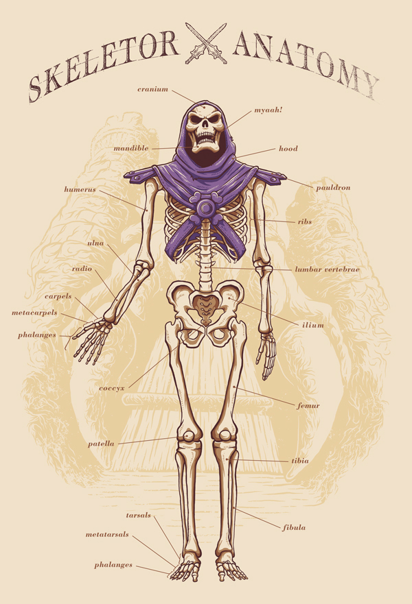 Skeletor Anatomy by Adriano Alves
